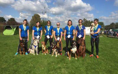 Dogsurvival 23 september 2017 te Delft.