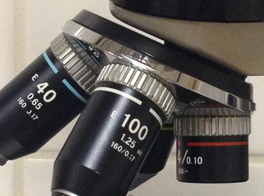 Microscopie en onderzoek